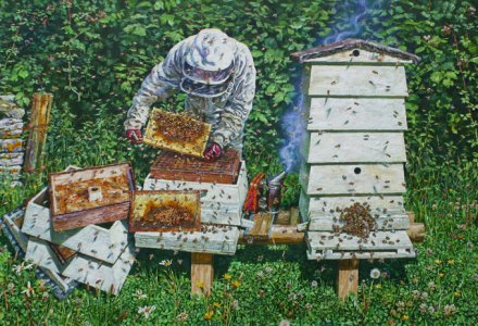 Image of a bee keeper with his bees