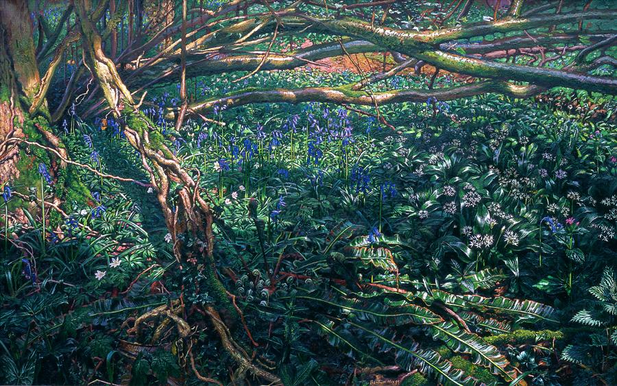 Image of a wild garden